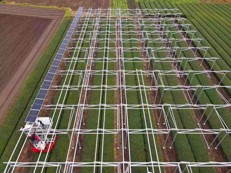 solar farm land agriculture racking mounting system